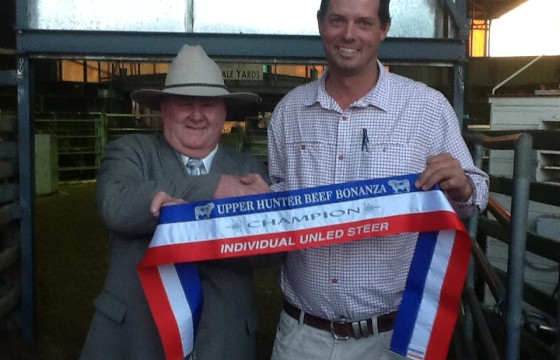 2014 Upper Hunter Beef Bonanza. Lachlan receivng Champion steer ribbon from judge Dennis Strachan