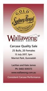 thumbnail of 2017 ANNUAL BULL SALE CATALOGUE FOR WEB low res