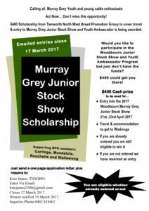 thumbnail of BPG Scholarship to Murray Grey Junior Stock Show